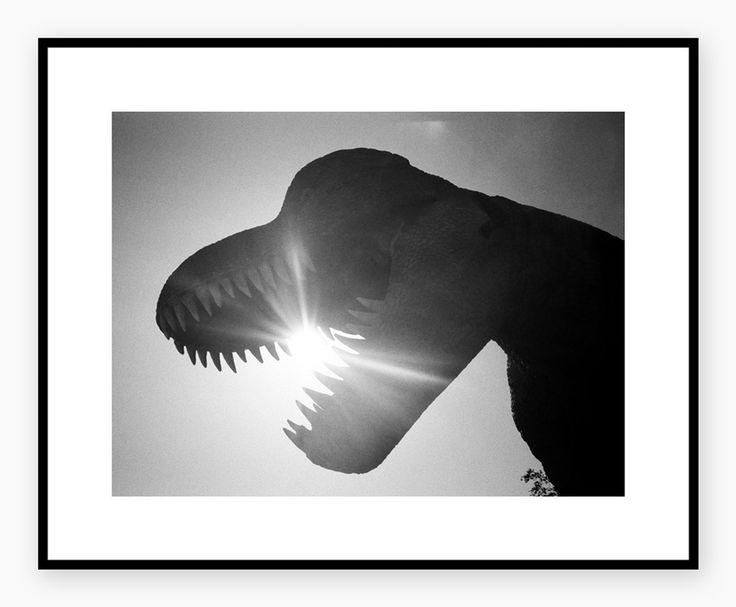 #HELJEPOLAROIDS  #DinopartII #poster #interior