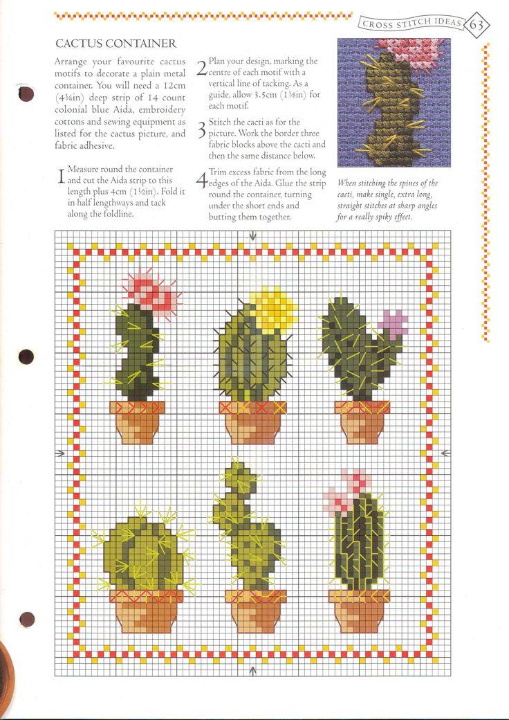 cactus2.jpg (2469×3491)