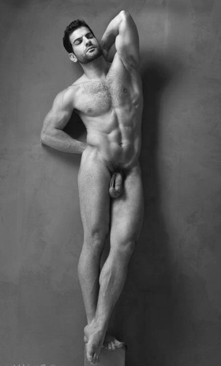 Male body types nude #12