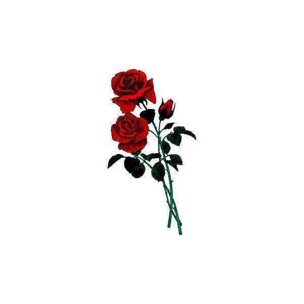 Gifs de Flores com Fundos Transparentes -Flowers Gifs- - CANTINHO... ❤ liked on Polyvore featuring flowers