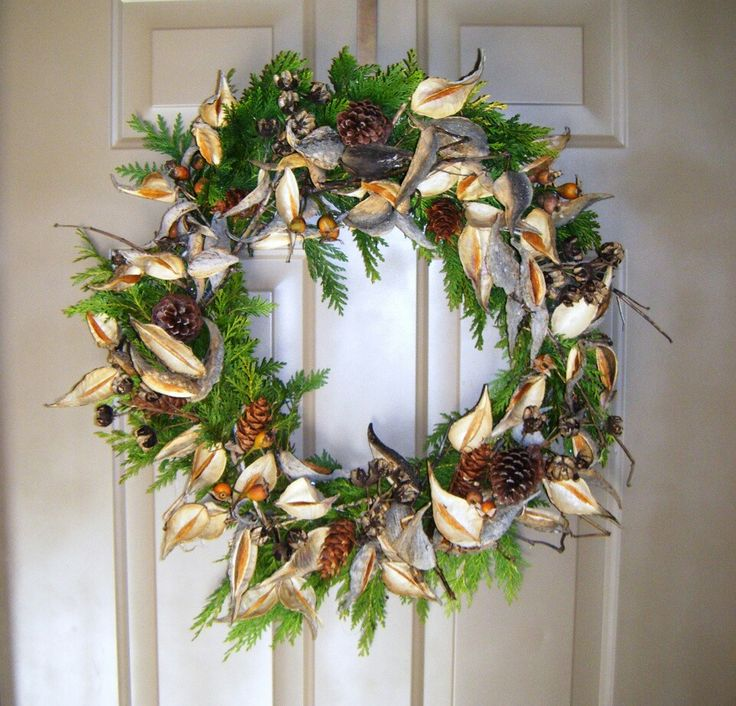 With Milkweed Pods Crafts Things To Do Pinterest