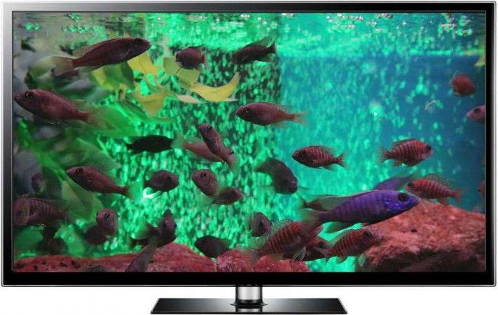 Green Bubble Tank aquarium screensaver and aquarium video download bundle.