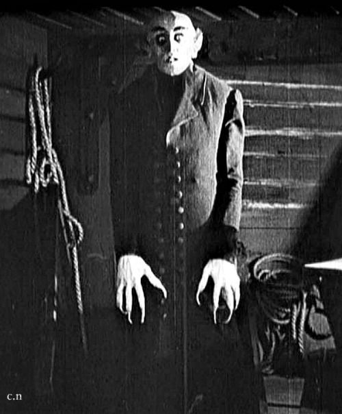 cinematography on nosferatu Filming has begun on the remake of the iconic german expressionist horror film nosferatu with doug jones starring in the title role.