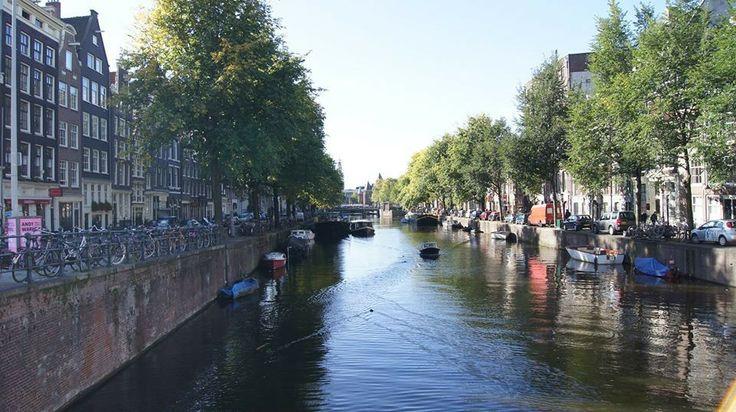 Амстердам 2012