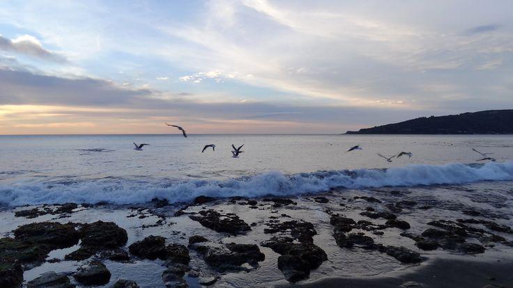 Playa de Niebla. Foto de Ricardo Rifo Paredes.