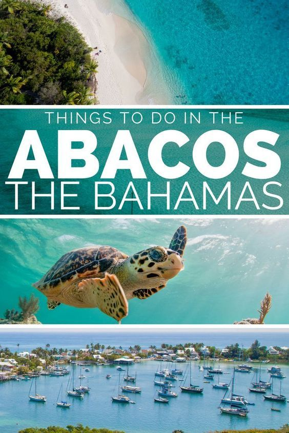 Things to do in Bahamas on the Abaco Bahamas. For the best Bahamas Vacation visit Abaco Bahamas and island hop the Abacos Cays; Green Turtle Cay, Elbow Cay, Treasure Cay, Man-o-War Cay. Swim with the Bahamas Abaco turtles at Green Turtle Cay or see the swimming Bahamas Pigs at No-Name Cay. With some of the most idyllic Bahamas Beaches, Abaco Bahamas is a great choice for your Bahamas Honeymoon or Bahamas couple travel. Leave Nassau Bahamas, and head to the Abacos Bahamas on a day trip or…