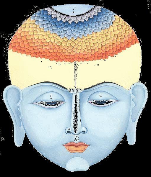 Lotus Çiçeği hem özellikleri ile hemde bu özellikleri anlamlandıran inanışlar ile saflığın sembollerinden en önemlisidir.Budizm'in ise kutsal sembollerindendir.Bin yapraklı lotus cennetin krallığını temsil eder.  Lotus çiçeği bataklığın içinden yukarılara doğru çıkarken kökleri ile yaşar, çiçek haline geldiğinde deköksüz yaşayan bir çiçektir. Ölü iken diri diri iken ölüdür...Ölmeden önce ölünüz'ün yansıması gibi Lotus Çiçeği bataklıktan çıkan ama kendi kendini temizleyebilen bir çiçektir…