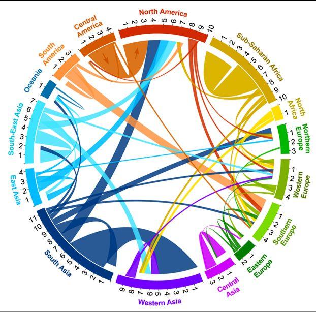 In che direzione si muovono i nuovi flussi migratori? Da quali paesi provengono i migranti e verso quali paesi si dirigono? Un'infografica d...