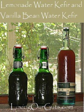 Water Kefir: Lemonade and Vanilla Bean Flavors