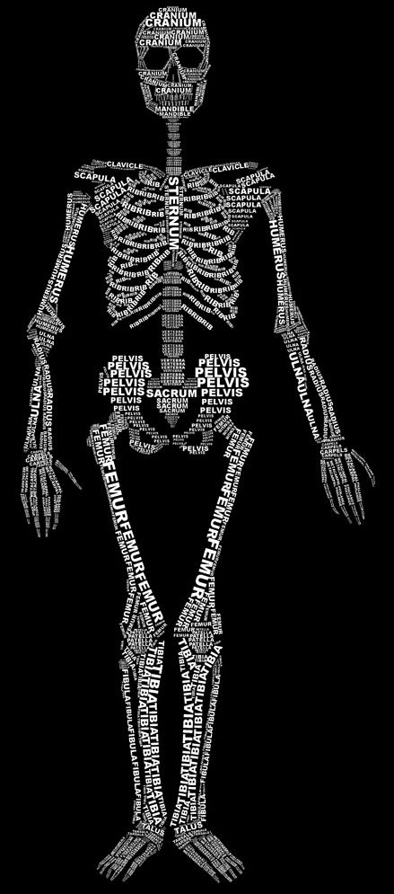 WOW!!! http://luc.devroye.org/ElizabethParkin-TypographicSkeleton-2012.jpg