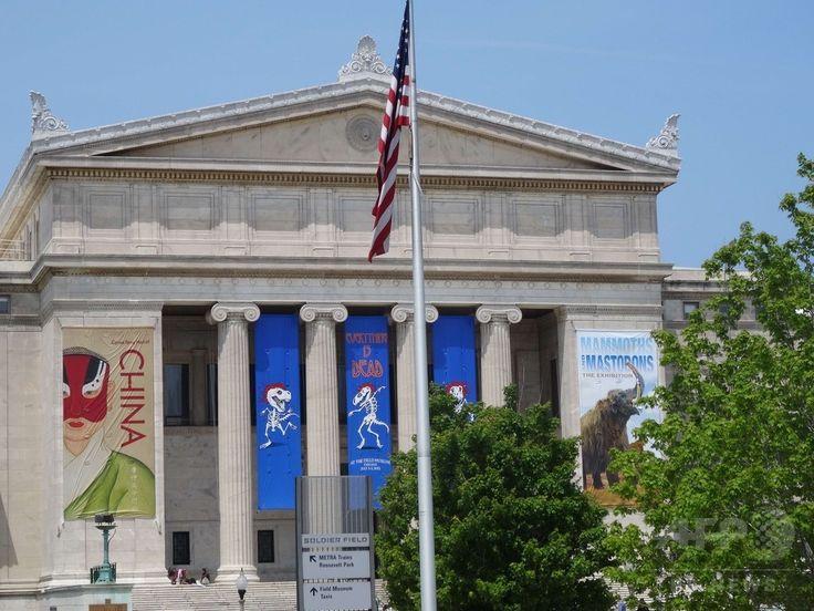 米イリノイ州シカゴのスタジアム「ソルジャー・フィールド」近くの博物館に掲げられた「グレイトフル・デッド」のコンサートの広告(2015年7月2日撮影)。(c)AFP/SHAUN TANDON ▼7Jul2015AFP|グレイトフル・デッド、米シカゴで最後のコンサート http://www.afpbb.com/articles/-/3053880