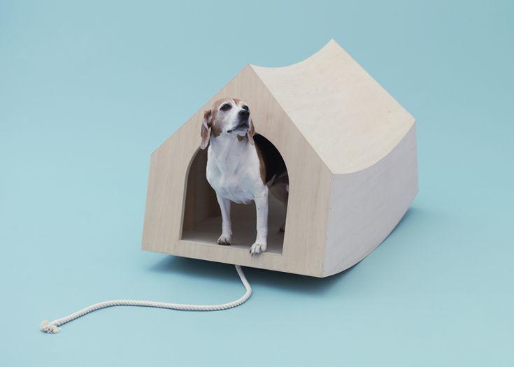 Architecture_pour_chiens_10