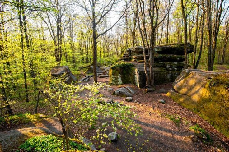 17 Best Hikers Guide To New York Images On Pinterest Hiking Routes Hiking Trails And In New York
