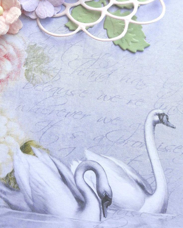 Скоро что-то будет��. Всем хороших выходных. У нас наконец-то потеплело, аж +18����, все кинулись гулять и есть мороженое��. #лебеди #любовь #свадьба #весна #swan #love #justmarried #spring #handmade #surgut #scrapbooking http://gelinshop.com/ipost/1523794064846404750/?code=BUlmqDqBLyO