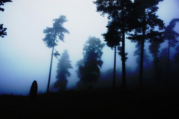 Leith Hill Misty Sunrise