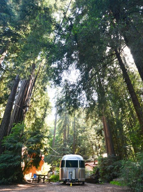 If you want to camp in California's Redwood forests you could go to Santa  Cruz Redwoods RV Resort or go to Big Sur Campground and Cabins, which has  the added benefit of being near Monterey, Carmel, and some of the most  beautiful beaches California has to offer. In all transparency, we haven't