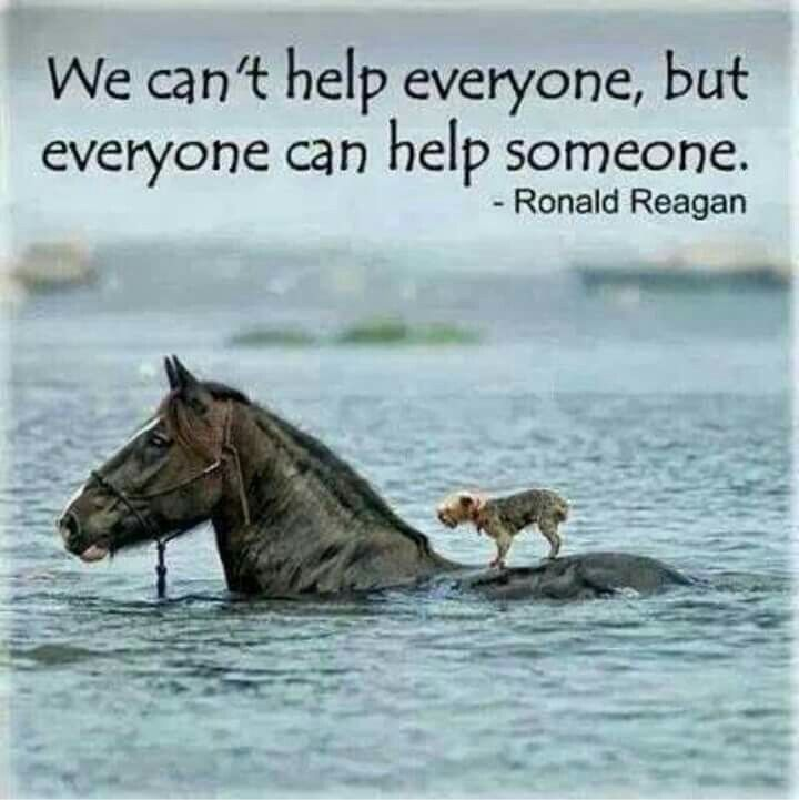 Inspiration: We can't help everyone, but everyone can help someone. ~ President Ronald Reagan