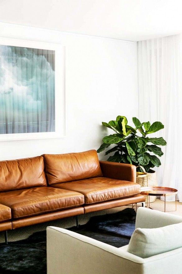 Leather sofa in a modern mininal living room