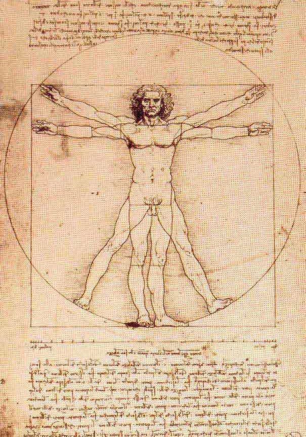 Leonardo's vitruvian man (@ Accademia)
