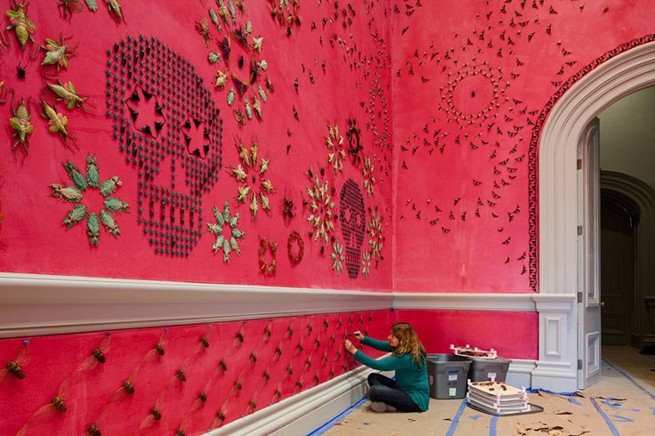 jennifer angus wallpapers renwick gallery with a pattern of 5,000 exotic bugs   #creative #installation #inspiration #paint #package #design #graphicdesign #designer #branding #picoftheday #like #follow #repost #art #installation #dog #cat #animals