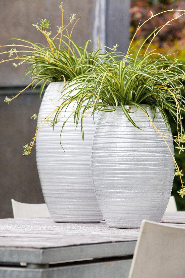 kom in de strand-sfeer in je eigen tuin met modern witte vazen met gras erin.