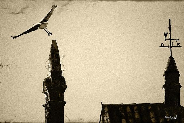 El salto del angel by ProHiguera, via Flickr