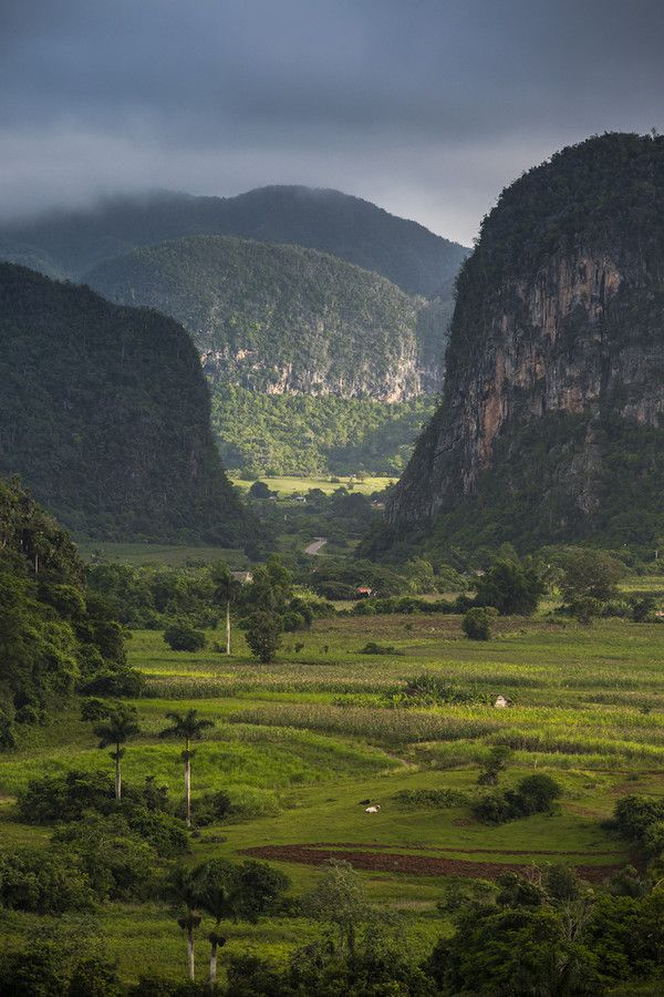 Viñales, Cuba. The landscape across the island is very varied and almost tropical in parts. This valley has dramatic limestone rocks and cave systems.
