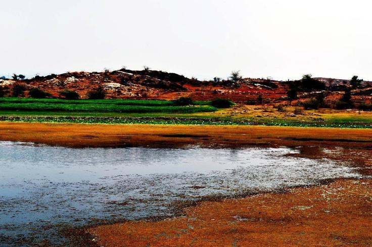 A beautiful lake at Vartol Mandir near KhedBramha -  by Jignesh Shanishvara
