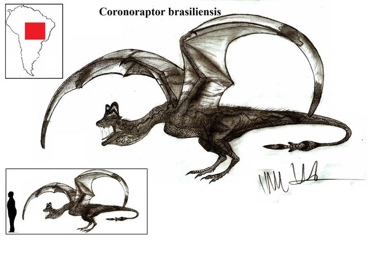 Coronoraptor brasiliensis by Teratophoneus.deviantart.com on @DeviantArt
