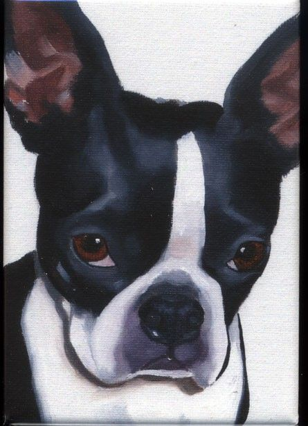 Boston Terrier cute magnet by rubenacker on Etsy