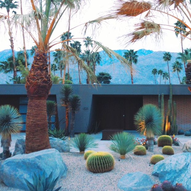 Cactus Garden and mid-century modern home in Palm Springs