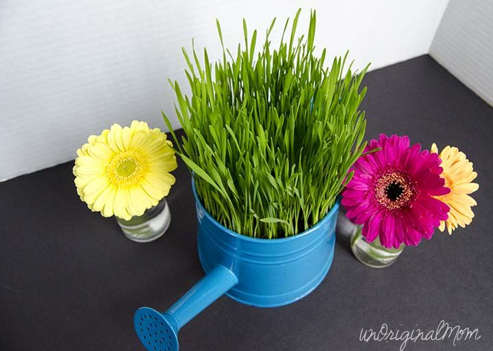 Beach Grass Centerpiece : Best grass centerpiece ideas on pinterest beach