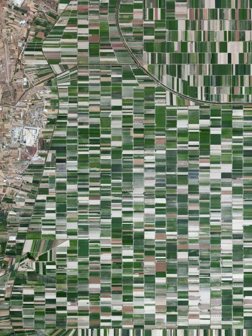 The plain of Fucino in the Abruzzo region of Italy is commonly recognized for the quality of the vegetables that are grown here - in particular the potatoes, carrots, and radishes. What is now an entire plain filled with farms was once Fucine Lake, the third largest lake in Italy. The lake was drained in 1877 to make agricultural development possible here, an area that is now responsible for roughly 25% of the agricultural production in the region.