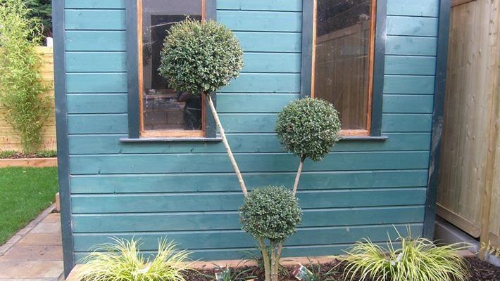 using plants to distract...........