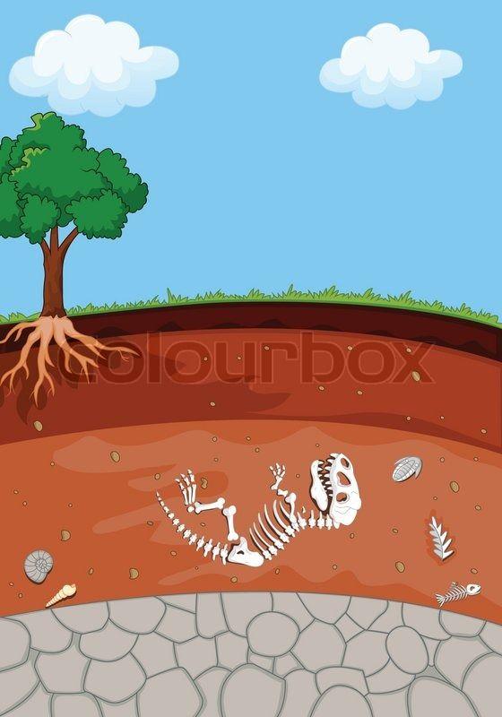 cartoon underground cross section dinosaur skeleton