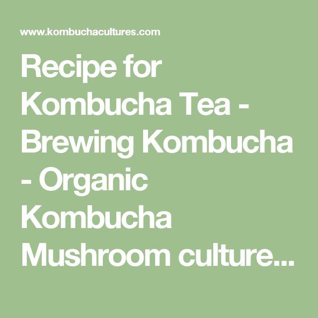 Recipe for Kombucha Tea - Brewing Kombucha - Organic Kombucha Mushroom culture - How to ferment beverages - How to make | brew Kombucha Tea
