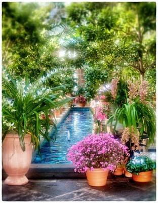 My dream pool!!