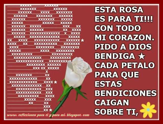 Reflexiones para TI y para MÍ: * ESTA ROSA ES PARA TI !!!   one ...