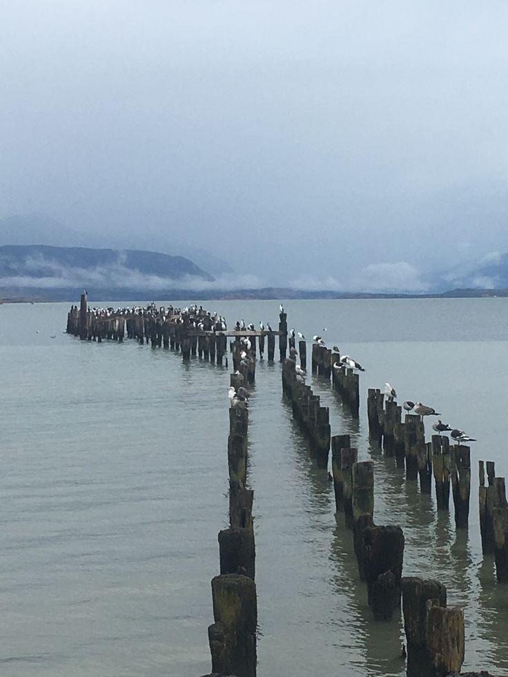 Puerto Natales, Región de Magallanes, Chile.