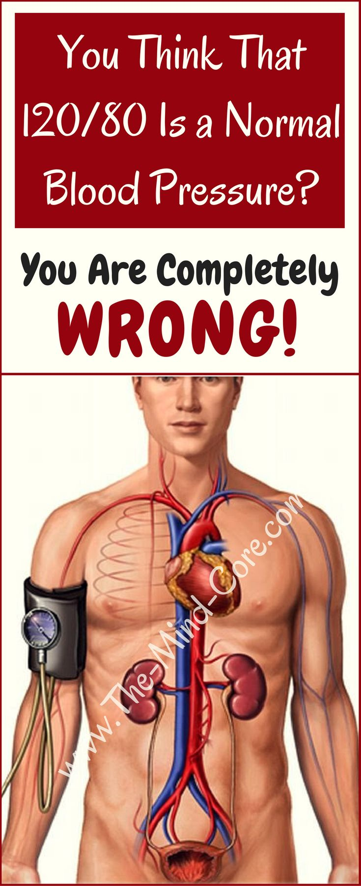 ATTENTION: You Think That 120/80 Is A Normal Blood Pressure?! Here's the Answer...