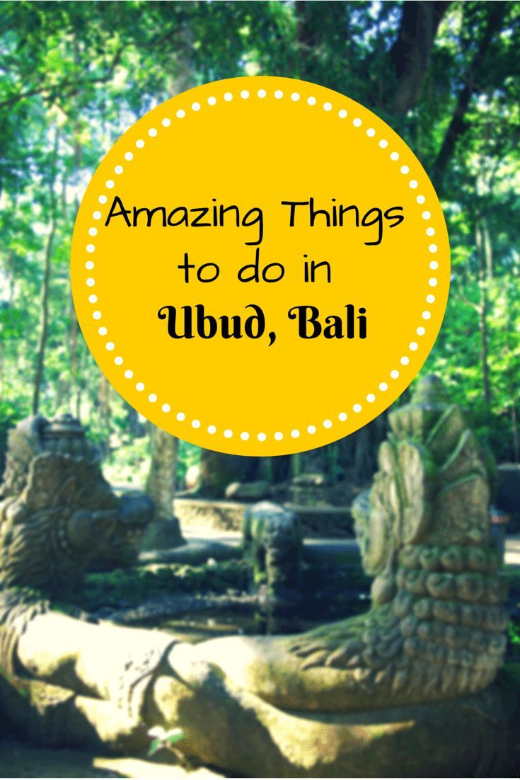 Amazing things to do in Ubud Bali: temples, palaces, rice terraces, monkeys and food!