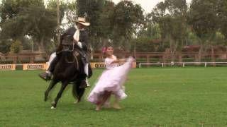 marinera a caballo de paso peruano - YouTube