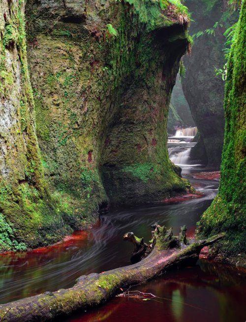The Devil's Pulpit in Scotland: Finnich Glen, Scotland, Mossy Canyon, Color, Devil Pulpit, Alsac France, Desktop Wallpapers, Places, Photo