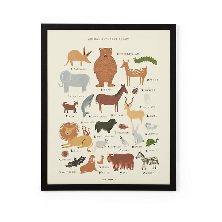Animal Alphabet Poster by Rifle Paper Co.: Paper Frames, Rifles Paper, Animal Alphabet, Frames Animal, Alphabet Poster, Animal Prints, Animal Poster, Anna Bond, Animal Wall