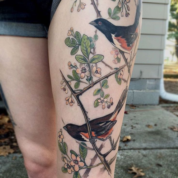 341 best images about ink on pinterest colorful bird for Brown tattoo ink cover up