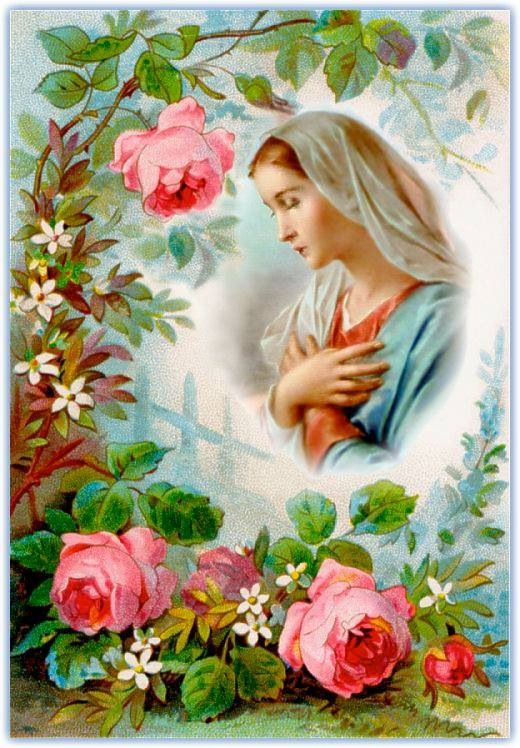 """People have asked me why Catholics worship Mary, and my response is always the same """"we do not worship Her, we honor Her as her son did, so why wouldn't we?"""""""