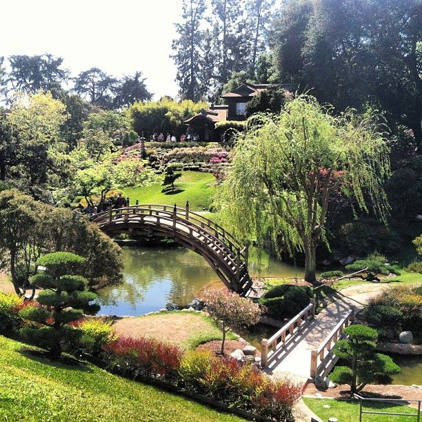 17 Best Images About Huntington Gardens California On Pinterest Gardens Museums And Los Angeles