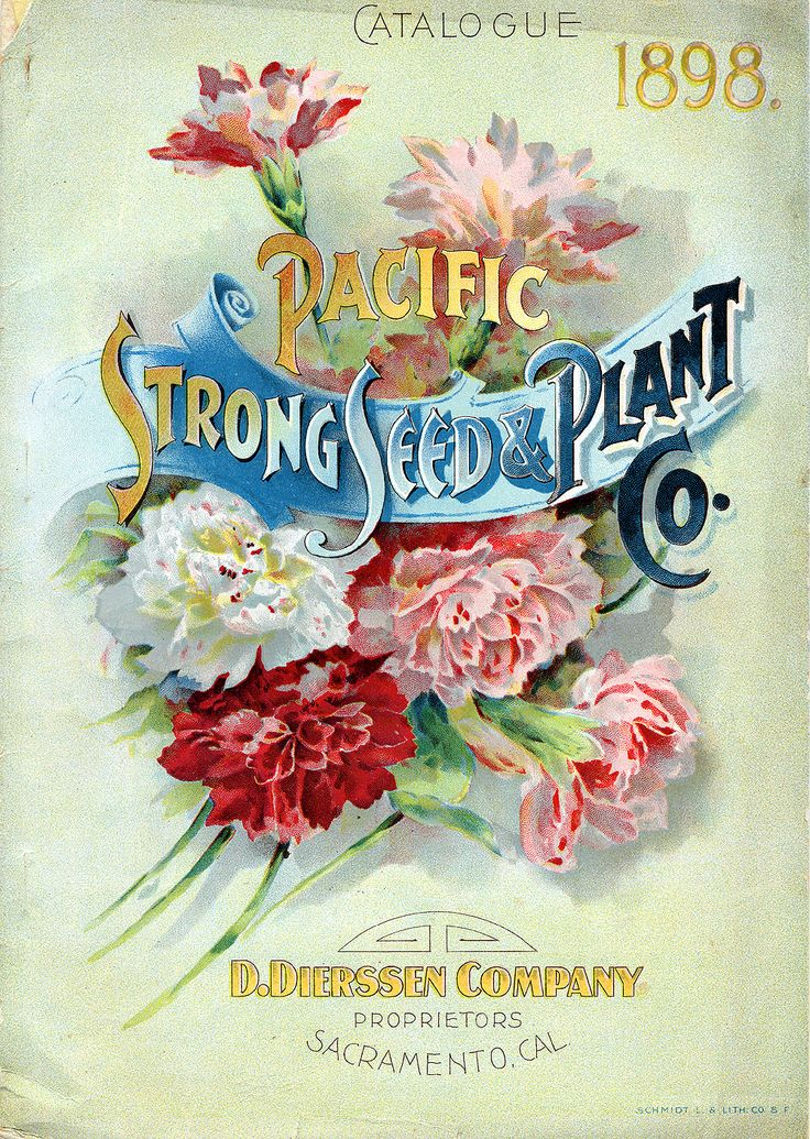 Pacific Strong Seed & Plant Co. catalogue, 1898 - D. Dierssen Company Proprietors Sacramento, CAL.