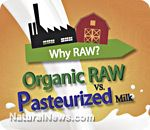 Health Ranger releases raw milk infographic comparing fresh raw dairy to pasteurized homogenized dead milk