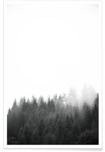 Walk Through The Forest - Studio Nahili - Premium Poster
